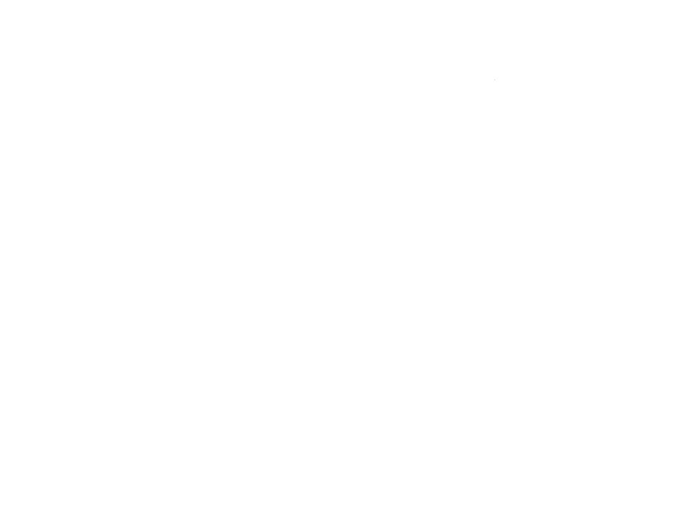 Dram Mor Logo White1